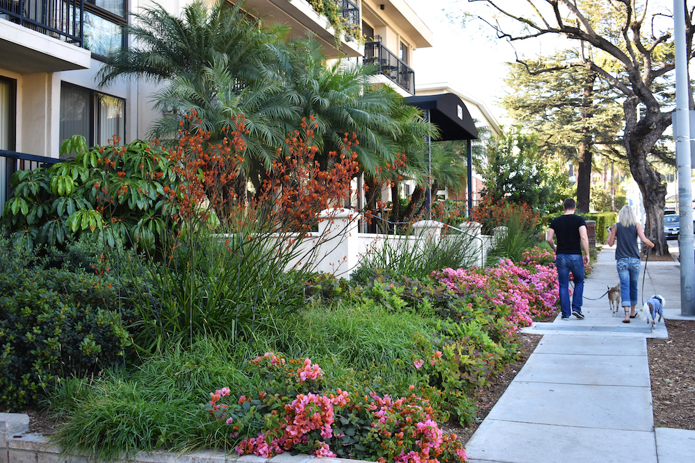 Los Angeles California Apartment Building Native Mediterreanean Garden